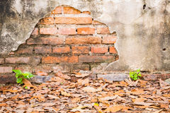 Cracked concrete vintage brick old wall background. Royalty Free Stock Photo