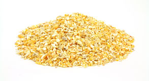 Cracked corn bird food Stock Image