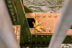 Cracked and rusty. Cracked dead leaf resting on a corroded rusty girder above a river Royalty Free Stock Photography