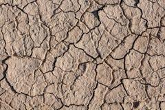 Cracked Dead Sea bottom Stock Photos