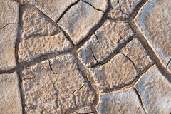 Cracked Dead Sea bottom stock images