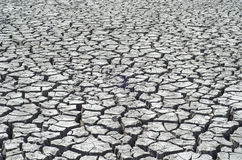 Cracked desert as background Royalty Free Stock Photo