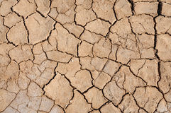 Cracked desert earth Stock Photos