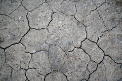 Cracked Desert Ground Royalty Free Stock Photo