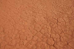 Cracked desert  ground Stock Images