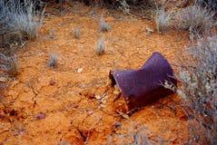 Cracked Desert Mud & Billy Stock Image