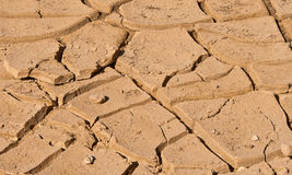 Cracked desert soil Stock Images