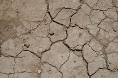Cracked Dirt. Dry cracked dirt due to lack of water Royalty Free Stock Image