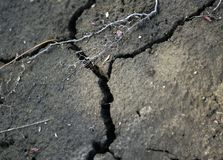 Cracked Dirt royalty free stock photography