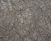 Cracked Dirt Royalty Free Stock Photos