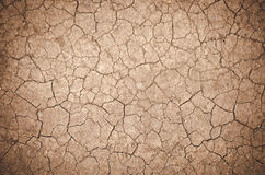Cracked dirt background. Background dry cracked earth or clay Stock Image