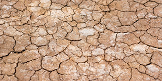Dry cracked dirt. Texture/background Stock Image