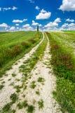 Cracked dirt road between green fields Stock Photo