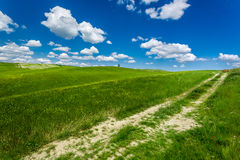 Cracked dirt road between green fields Stock Photography