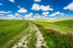 Cracked dirt road between green fields Royalty Free Stock Image