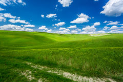 Cracked dirt road between green fields Royalty Free Stock Photos