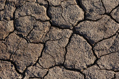Free Cracked Dried Earth Royalty Free Stock Photo - 456365