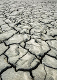 Cracked dried earth Stock Photography