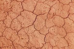 The cracked, dried earth is yellow. A desert without water. Arid ground. Thirst for moisture on a lifeless space. Ecological situa. Tion in the world.Saving stock photography