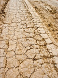 Cracked dried ground. Road photo royalty free stock photography