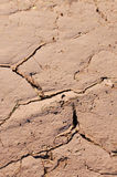 Cracked dried ground Stock Photos