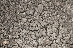 Cracked or dried ground/earth texture background. Aridity, desolation and dryness concept stock photography