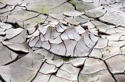 Cracked dried ground Royalty Free Stock Photos