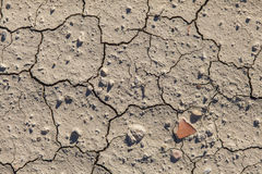 Cracked dried land Royalty Free Stock Photos