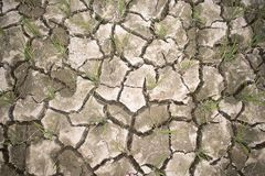 Cracked dried land of a rice field royalty free stock image