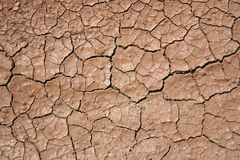 Cracked and dried mud Stock Images