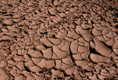 Cracked Dried Mud. In the oasis of Skoura in the Sahara Desert in Morocco Stock Photo