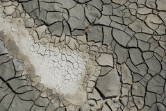 Cracked, Dried Mud Royalty Free Stock Photo