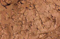 Cracked and dried mud dirt background texture in the desert. Stock Image