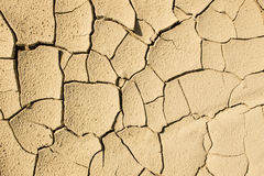 Cracked dried mud Royalty Free Stock Images