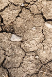 Cracked,dry drought stricken parched land dirt Royalty Free Stock Photo