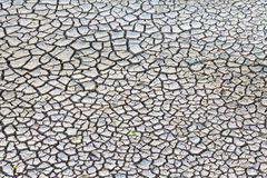Cracked and dry earth Royalty Free Stock Images