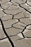 Cracked, dry earth Royalty Free Stock Image