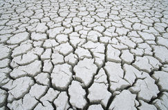 Cracked dry earth Stock Photos