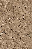 Cracked dry earth Royalty Free Stock Image