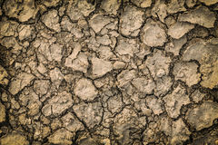 Cracked dry ground Stock Images