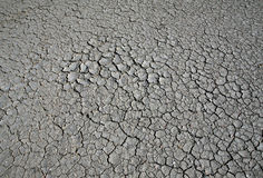 Cracked dry ground in summer Royalty Free Stock Photography