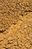 Cracked dry ground texture Stock Photos