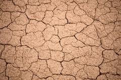 Cracked dry ground texture. Closeup in national park Altyn Emel in Kazakhstan, Central Asia royalty free stock images