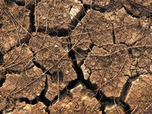 A cracked dry ground texture and background. stock image