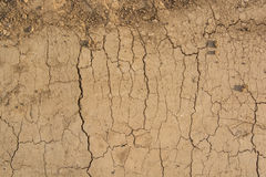 Cracked dry land in a desert Royalty Free Stock Photos