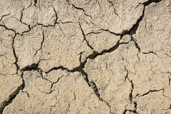 Cracked dry land in a desert Royalty Free Stock Images