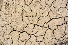 Cracked dry land in a desert Stock Photography