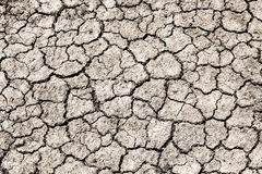 Cracked dry land without water Royalty Free Stock Photos