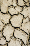 Cracked dry land without water Stock Photography