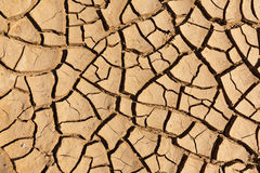 Cracked dry mud Stock Image